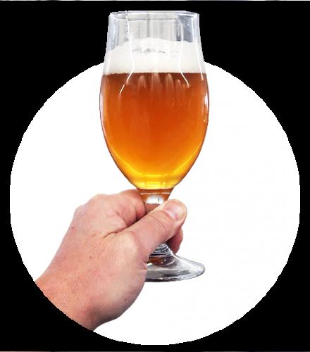 fenix-beer-2